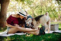 Pares que juegan con el perro en comida campestre Imágenes de archivo libres de regalías