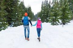 Pares que llevan a cabo la opinión de Forest Outdoor Winter Back Rear de la nieve de las manos que camina Imagenes de archivo