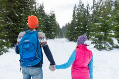 Pares que llevan a cabo la opinión de Forest Outdoor Winter Back Rear de la nieve de las manos que camina Imágenes de archivo libres de regalías