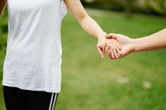 Pares que llevan a cabo las manos delante de la hierba verde Foto de archivo