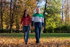 Pares que llevan a cabo las manos y que caminan en el bosque durante Foto de archivo libre de regalías