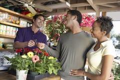 Pares que pagam por plantas no berçário Imagem de Stock Royalty Free