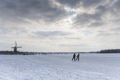 Pares que patinam no lago Foto de Stock