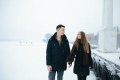 Pares que presentan en un parque nevoso Fotos de archivo