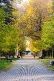 Pares que recorren en parque del otoño Imagen de archivo libre de regalías