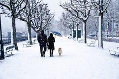 Pares que recorren en una tormenta de la nieve Fotografía de archivo
