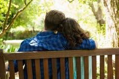 Pares que se abrazan en jardín Fotografía de archivo