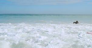 Pares que se divierten en el mar 4k almacen de metraje de vídeo