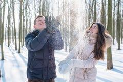 Pares que se divierten en parque nevoso Fotografía de archivo