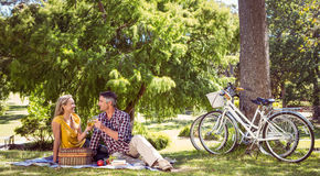 Pares que têm um piquenique no parque Imagem de Stock Royalty Free