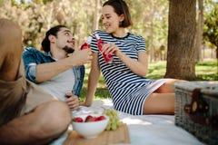 Pares que tienen comida campestre en el parque imagen de archivo libre de regalías