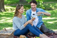 Pares que tienen una comida campestre con el vino Imagen de archivo libre de regalías