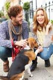 Pares que tomam o cão para a caminhada na rua da cidade Fotografia de Stock Royalty Free