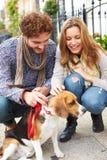 Pares que toman el perro para el paseo en la calle de la ciudad Imagen de archivo libre de regalías