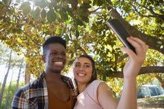 Pares que toman el selfie en el teléfono móvil Imagen de archivo