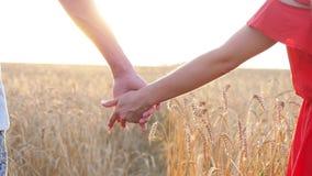 Pares que toman las manos en campo sobre puesta del sol