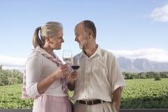 Pares que tuestan las copas de vino en el campo Fotografía de archivo libre de regalías