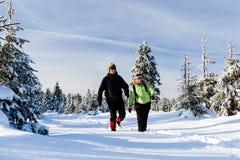 Pares que van de excursión en nieve en montañas del invierno Imagenes de archivo