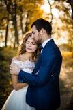 Pares románticos del recién casado del valentyne del cuento de hadas Imágenes de archivo libres de regalías