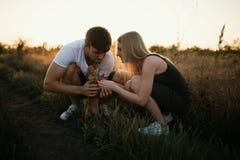 Pares románticos en la puesta del sol con el perrito de la chihuahua Dos personas en amor en la puesta del sol o la salida del so Fotos de archivo libres de regalías