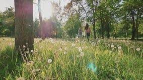 Pares románticos en un parque verde hermoso con las porciones de árboles y dientes de león blancos en la luz del sol Corren, abra metrajes
