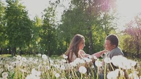 Pares románticos en un prado verde entre muchos dientes de león en los rayos de la luz del sol Miran en uno a ojos del ` s almacen de metraje de vídeo
