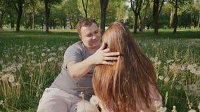 Pares románticos entre los dientes de león blancos en el claro Miran uno a El individuo toca el pelo el suyo almacen de video