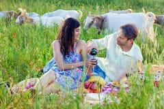 Pares románticos que gozan del vino en una comida campestre del verano Imagen de archivo libre de regalías
