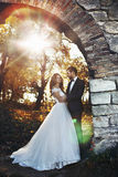 Pares românticos do recém-casado do valentyne do conto de fadas que abraçam e que levantam Fotos de Stock Royalty Free