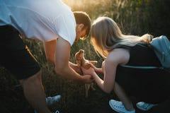 Pares românticos no por do sol com cão da chihuahua Dois povos no amor no por do sol ou no nascer do sol Homem e mulher no campo Foto de Stock Royalty Free