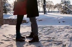 Pares românticos que estão na neve Imagens de Stock
