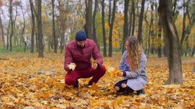 Pares românticos que recolhem a folha do outono no parque filme
