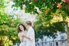 Pares rom?nticos felices en Par?s, abrazando debajo de las casta?as rosadas en la plena floraci?n foto de archivo