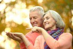 Pares sênior felizes Imagem de Stock Royalty Free