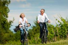 Pares sênior felizes que dão um ciclo ao ar livre no verão