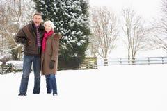 Pares sênior que andam na paisagem nevado Fotografia de Stock