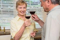 Pares sênior que bebem o vinho vermelho Fotos de Stock