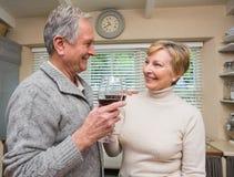 Pares sênior que bebem o vinho vermelho Fotografia de Stock