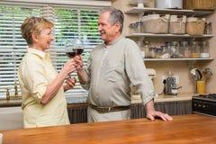 Pares sênior que bebem o vinho vermelho Foto de Stock