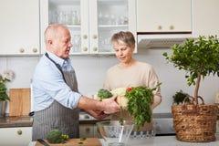Pares sênior que cozinham junto Foto de Stock Royalty Free