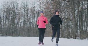 Pares saudáveis novos bonitos positivos que correm com o sportswear através da floresta na manhã do inverno video estoque