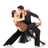 Pares sensuais da dança da salsa. Isolado Fotografia de Stock Royalty Free