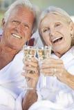Pares sênior felizes que bebem o vinho branco de Champagne Fotografia de Stock