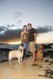 Pares sonrientes con los perros en la playa Imágenes de archivo libres de regalías