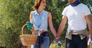 Pares sonrientes que caminan con la cesta de mimbre en la granja 4k almacen de video