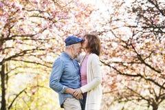 Pares superiores bonitos no amor fora na natureza da mola Imagens de Stock Royalty Free