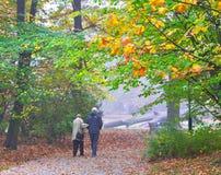 Pares superiores que apreciam o passeio no parque do outono fotos de stock royalty free