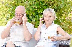 Pares superiores que sentam-se em um sofá, álcool bebendo Imagem de Stock