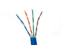 Pares torcidos cable de la red de la categoría 6 Fotografía de archivo libre de regalías