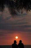 Pares tropicais das férias no por do sol de observação da praia Foto de Stock